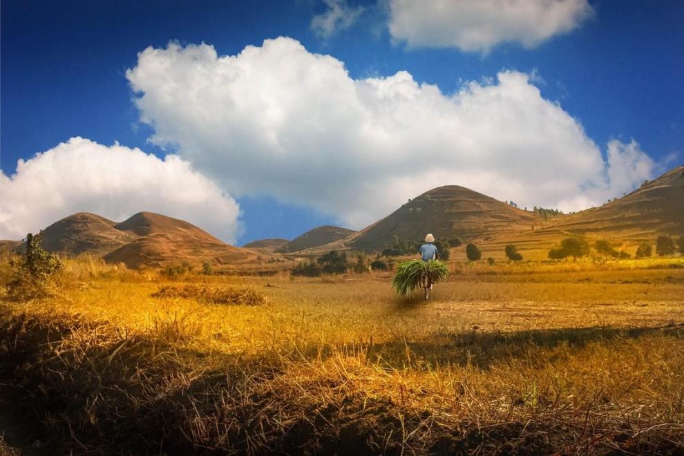 trekking, hiking, madagaskar, rejser, afrika, rickshaw tours & travel