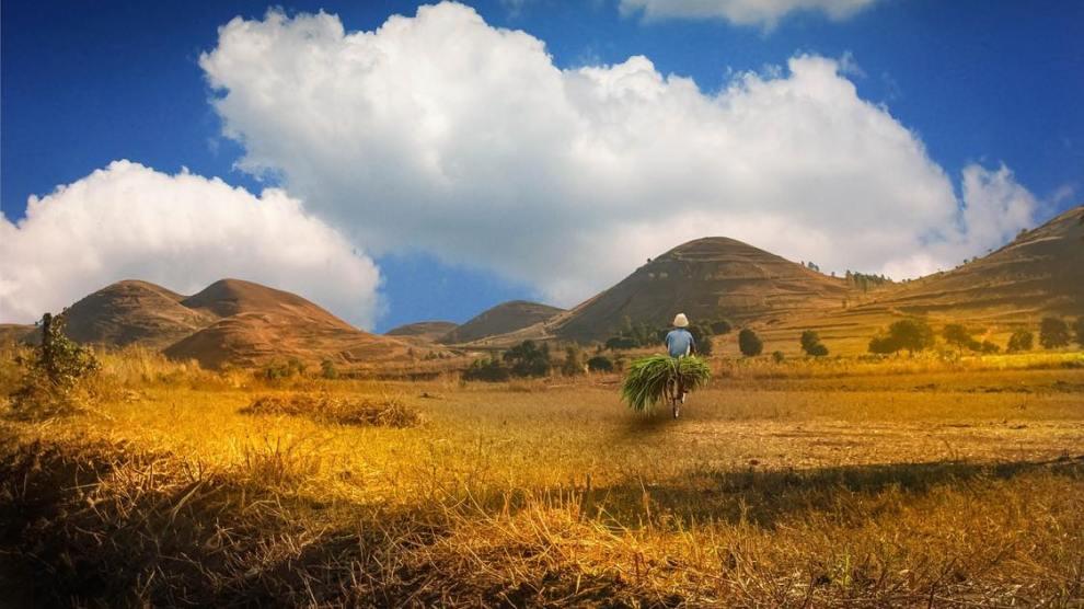trekking, randonnée, madagascar, voyage, afrique, tours en pousse-pousse & voyages