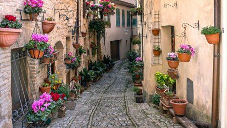 Umbrien, Trevi, Italien, Rejser, rejsetilbud, vitus rejser, gastronomisk rejse