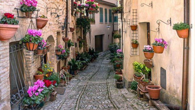 ウンブリア、トレヴィ、イタリア、旅行、旅行のお得な情報、vitus旅行、美食旅行