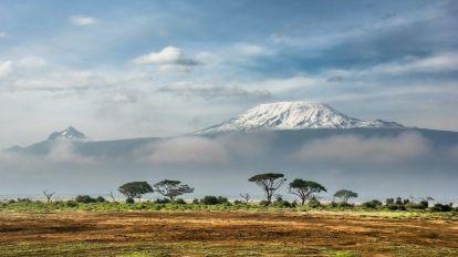 Kilimanjaro, planina, safari, Afrika, putovanja