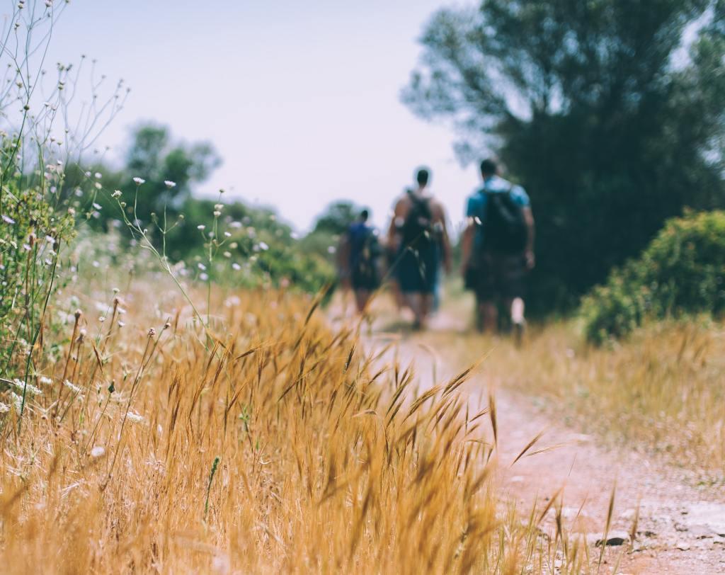 planinarenje, staza, putovanje