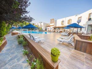 טורקיה, אלניה, מלון חוף פאלמייה, נסיעות