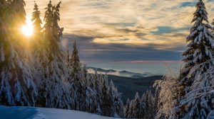 Harz, Germany, Snowy landscape, mountains, snow, forest, sunset