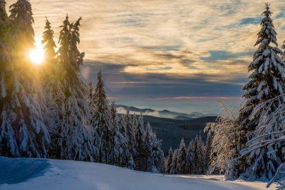 Harz, Đức, Phong cảnh có tuyết, núi, tuyết, rừng, hoàng hôn