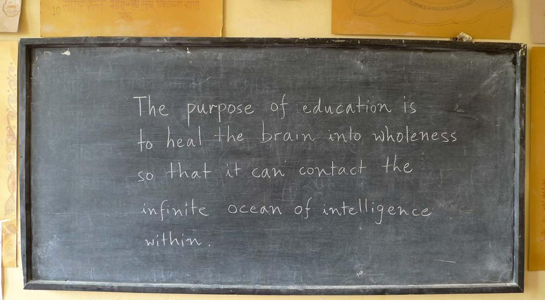 relativelylocal.com - holistic curriculum development - The Purpose of Education - by Anand Divedi APV School