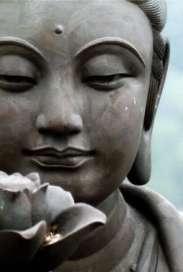regard bouddha