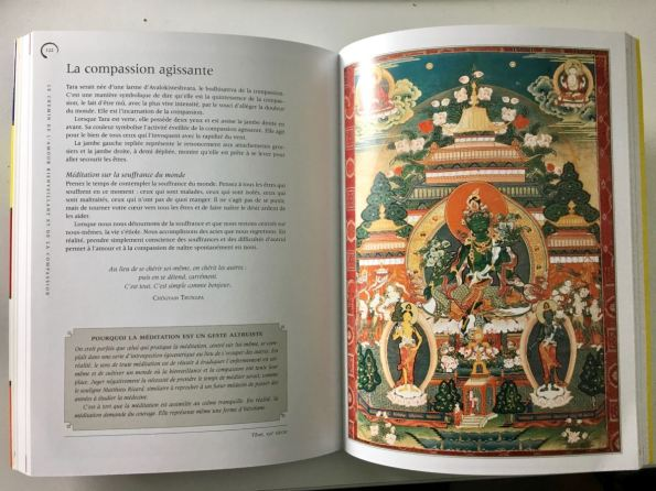 Bouddha - Fabrice MIDAL