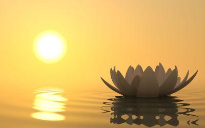 La méditation pour une vie sans stress