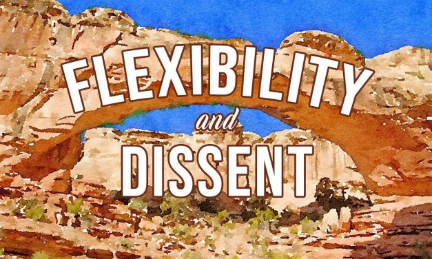 Flexibility & Dissent