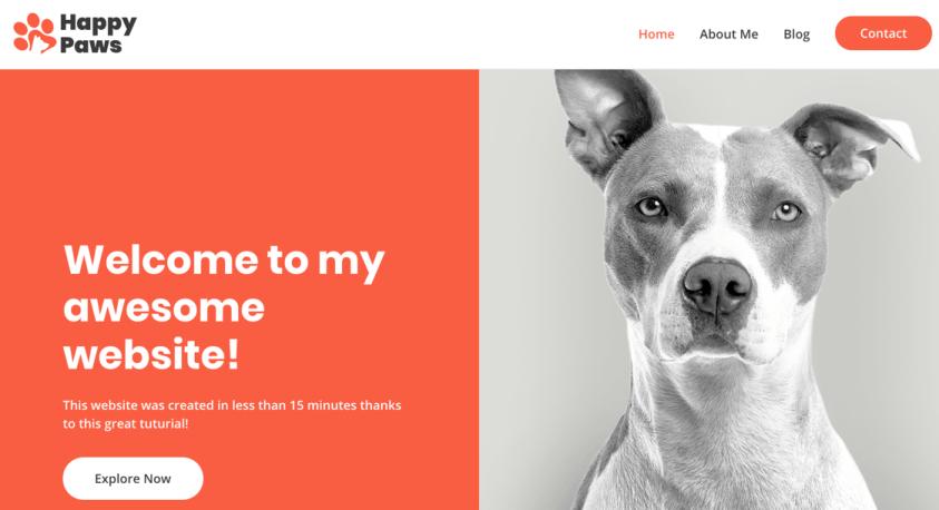 start a website example