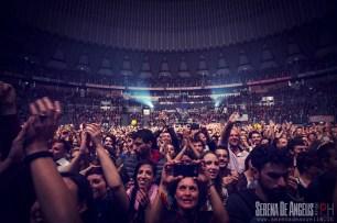 Foto_Concerto_FSG_Roma_18_novembre_2014_SDA_027