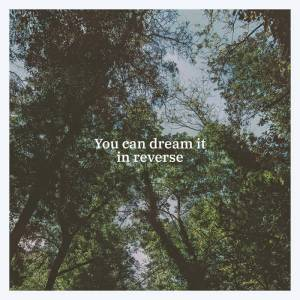 Black Tail - You Can Dream It In Reverse (Mia Cameretta Records/Lady Sometimes, 2020) di Gianni Vittorio