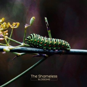 The Shameless - Blossoms (Autoprodotto, 2018) di Francesco Sermarini