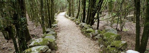 Slide - Sentier en Corse