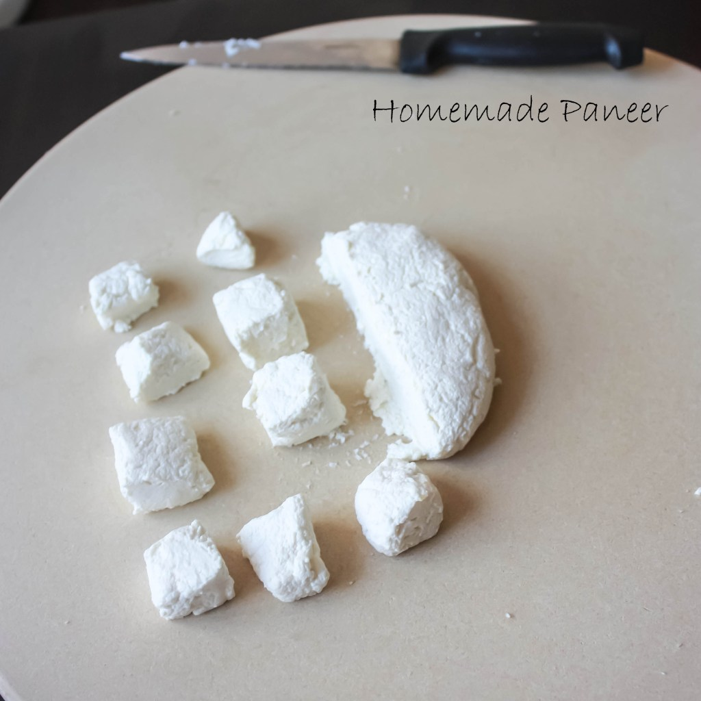 Homemade Paneer3