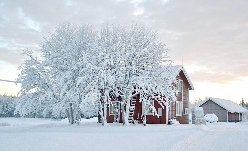 שוודיה – כדאי לדעת