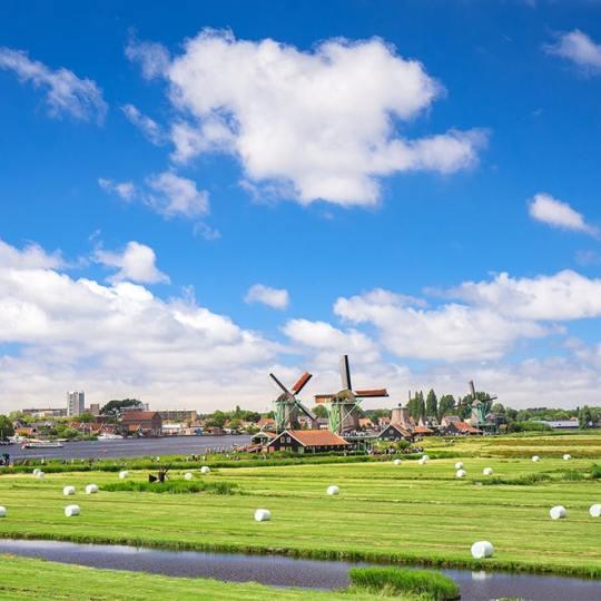 """רילוקיישן להולנד, נסיעות עסקים, נסיעות עבודה לחו""""ל: על תפיסה מול מציאות ביחס כלפי זרים"""