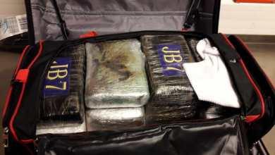 Photo of DNCD y Cesac bajo investigación por cargamento coca incautado en aeropuerto de Bruselas