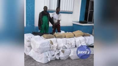 Photo of Haití arresta a 2 jamaicanos con más de 670 kilos de marihuana