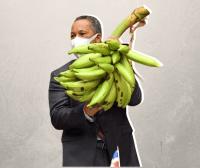 Photo of Con racimo de plátanos senador de Pedernales exige apoyo a sector agropecuario