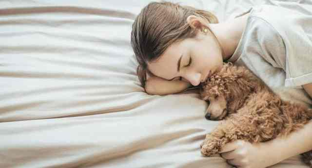 Image result for women prefer sleeping with dogs to men