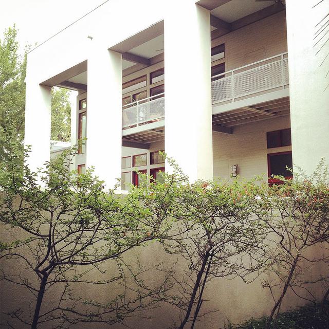 Savannah Modern