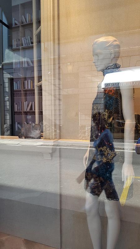 Window display with porcelain cat at Bottega Veneta maison on Via Sant Andrea