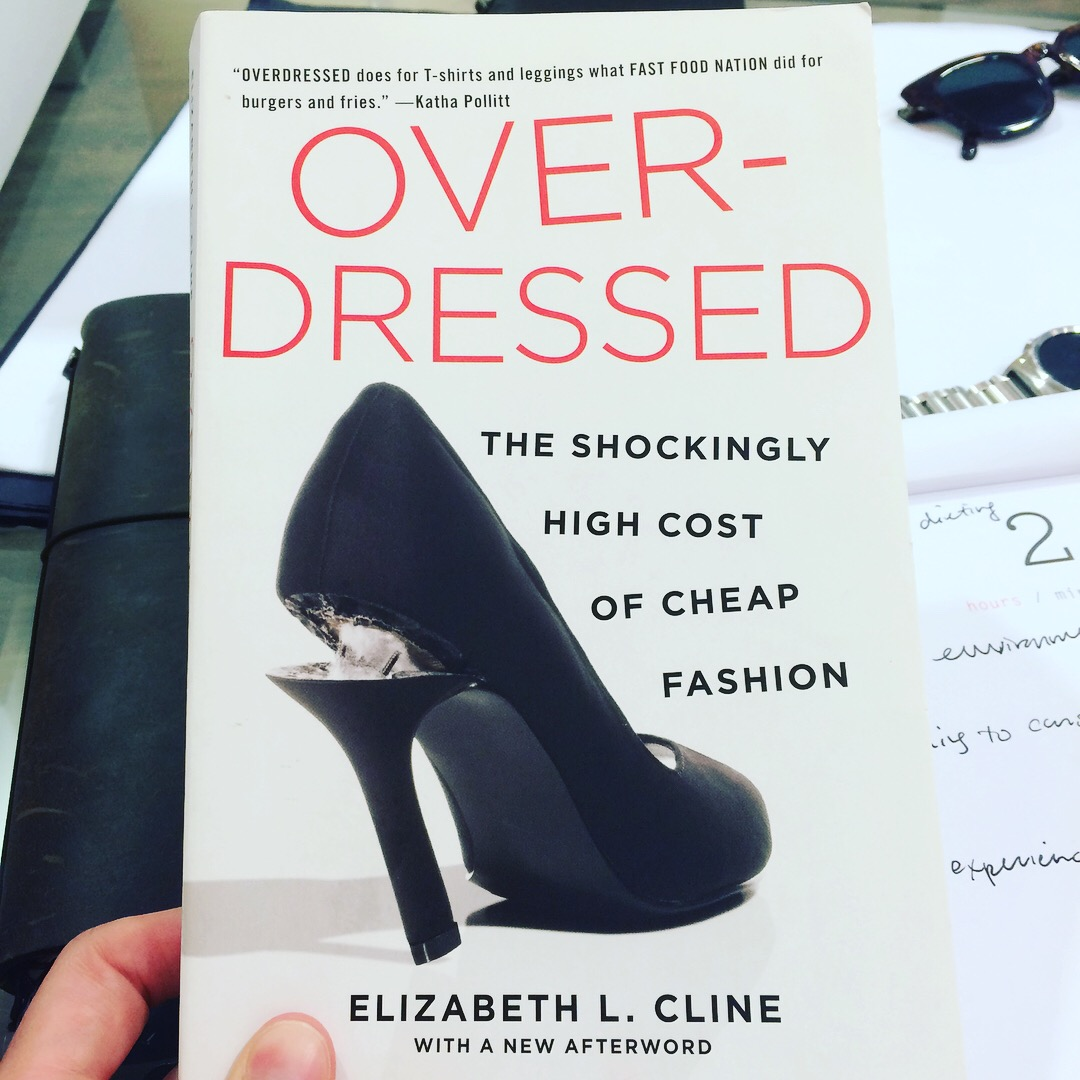 """d401b908d5 Overdressed  The Shockingly High Cost of Cheap Fashion by Elizabeth L.  Cline. """""""