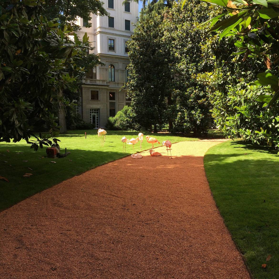 flamingos in a garden in Milano