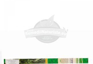BETISOARE PATRATE CITRONELA ROSIMPEX Tratament naturist odorizarea camerei aromatizarea incaperilor
