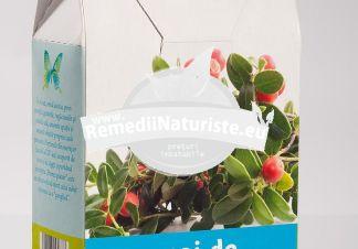 CEAI MERISOR 50gr PLAFAR Tratament naturist cistite afectiuni renale guta reumatism