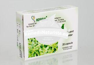 URZICA 20cps HOFIGAL Tratament naturist edeme infectii uro-genitale si afectiuni reumatismale infectii urinare nicturie