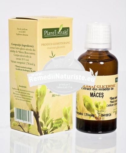ROSA CANINA (MACES) 50ml PLANTMED Tratament naturist rinofaringite neutralizarea tyraminei in migrene sistem imunitar antiinflamator