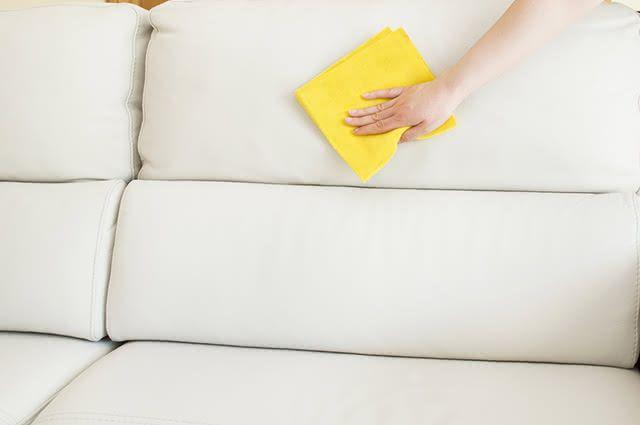 É possível retirar o odor dos animais domésticos dos estofados com o produto