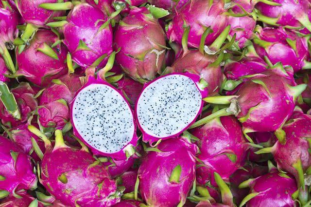 A pitaya fortalece o sistema imunológico e combate a ação dos radicais livres