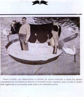 La Familia de Cisnes, 1935