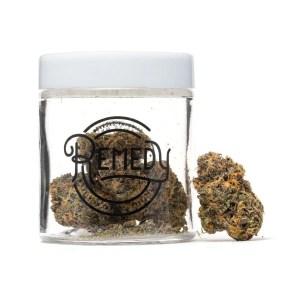 Cadillac Purple flower in Remedy glass jar