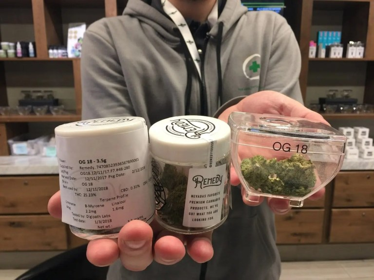 budtender showing terpenes on Remedy products