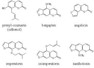 furocoumarines