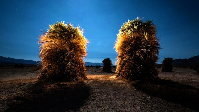 Night Landscape Photography: From Light Painting To Light Writing | A Seminar By Lance Keimig