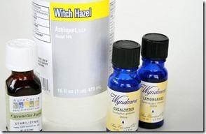homemade natural bug spray recipe (3)