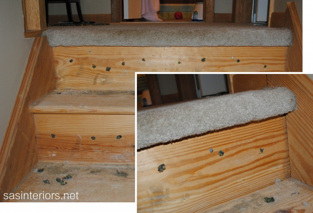 Carpet Transition On Wood Stairs