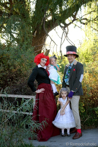 Alice in Wonderland Halloween Costumes for the whole family