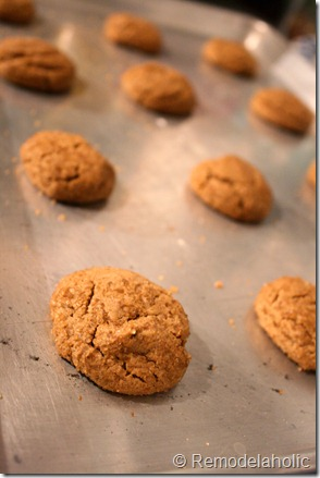 Chewy Ginger bread cookies3