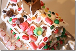 Gingerbread Houses (36)