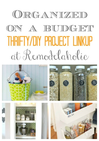 Organization Linkup Pin Pic