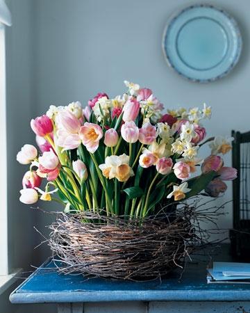 Martha Stewart tulips in nest