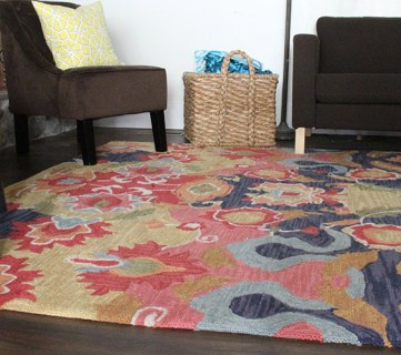 New Living Room Rug!?!