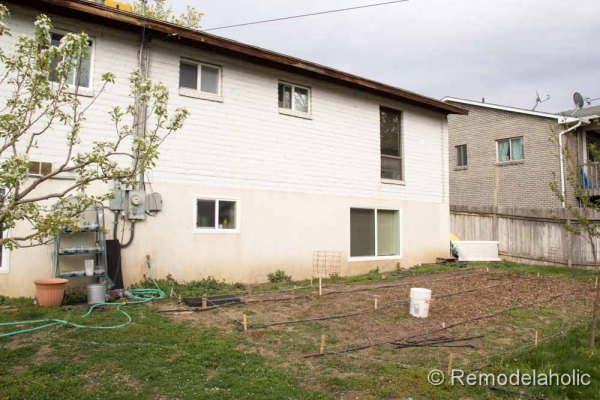 backyard before pictures-4